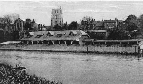 Beccles River Swimming
